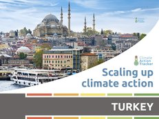 ScalingUpClimateActionSeries-ReportCovers-Turkey-WebThumbnail.jpg